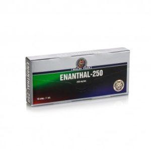 Enanthal-250 Testosteron kaufen im Roid Shop aus Deutschland . Online bestellen per Versand. Garantiert originale anabole Steroide und Wachstumshormone sowie PCT Medis billiger geliefert bekommen.