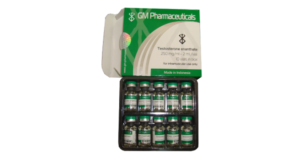 Testosterone Enanthate 250 mg GM kaufen im Roid Shop aus Deutschland . Online bestellen per Versand. Garantiert originale anabole Steroide und Wachstumshormone sowie PCT Medis billiger geliefert bekommen.