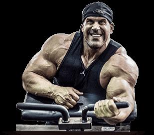 testosteron kaufen sustanon bestellen steroid kur steroide cycle versand aus deutschland